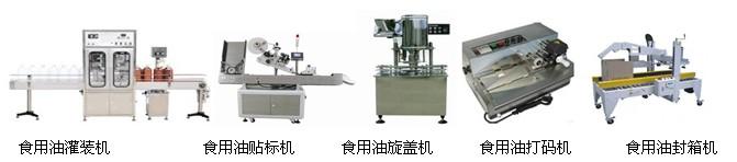 双头食用油灌装生产线配套设备