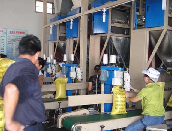 有机化肥颗粒灌装机在生产线中操作