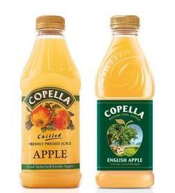 苹果汁灌装案例